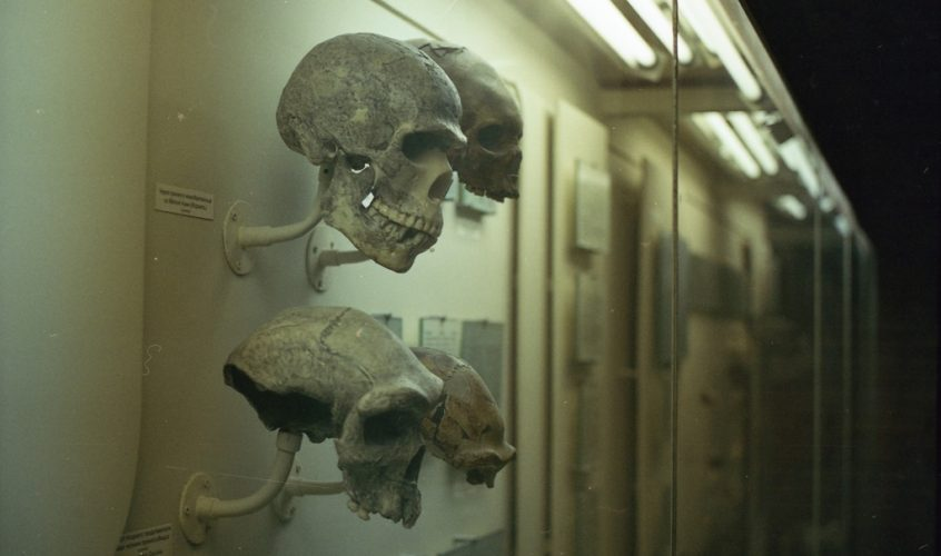 Image for an essay post on How technology Affects Anthropology